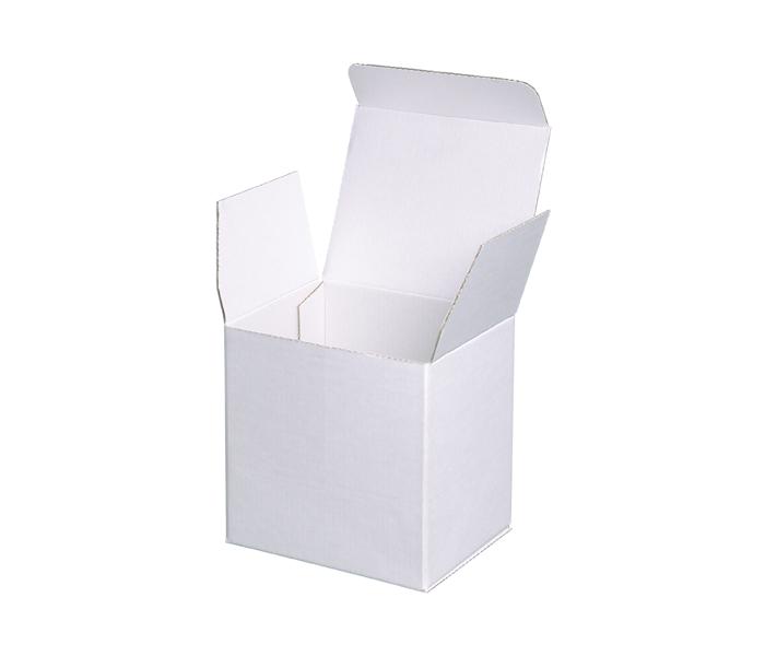 Polystyrene Mailer Box